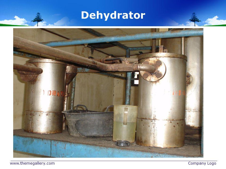 Dehydrator www.themegallery.com Company Logo