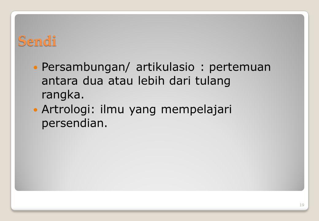 Sendi Persambungan/ artikulasio : pertemuan antara dua atau lebih dari tulang rangka. Artrologi: ilmu yang mempelajari persendian. 19