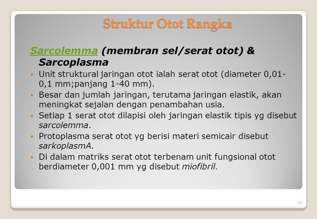 Struktur Otot Rangka SarcolemmaSarcolemma (membran sel/serat otot) & Sarcoplasma Unit struktural jaringan otot ialah serat otot (diameter 0,01- 0,1 mm