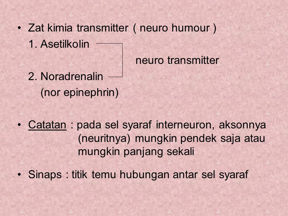 Zat kimia transmitter ( neuro humour ) 1. Asetilkolin neuro transmitter 2. Noradrenalin (nor epinephrin) Catatan : pada sel syaraf interneuron, aksonn