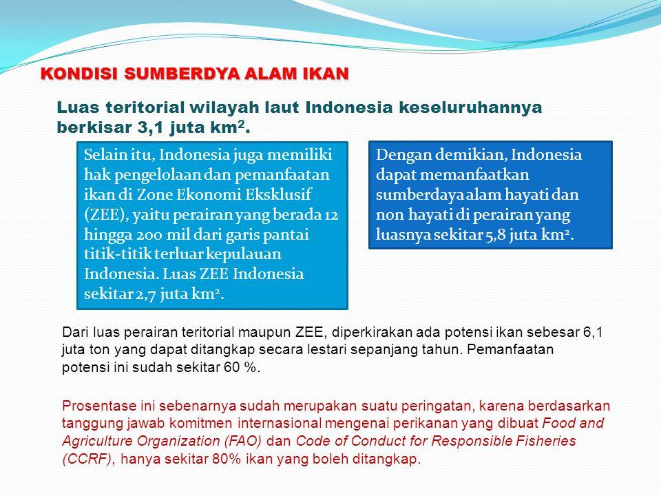 KONDISI SUMBERDYA ALAM IKAN Luas teritorial wilayah laut Indonesia keseluruhannya berkisar 3,1 juta km 2. Selain itu, Indonesia juga memiliki hak peng
