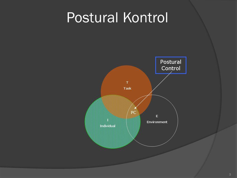 2 Postural Kontrol Istilah dari balance, equilibrium, dan postural kontrol merupakan sinonim yang berarti mekanisme tubuh untuk mempertahankan dirinya agar tidak jatuh dan tetap seimbang