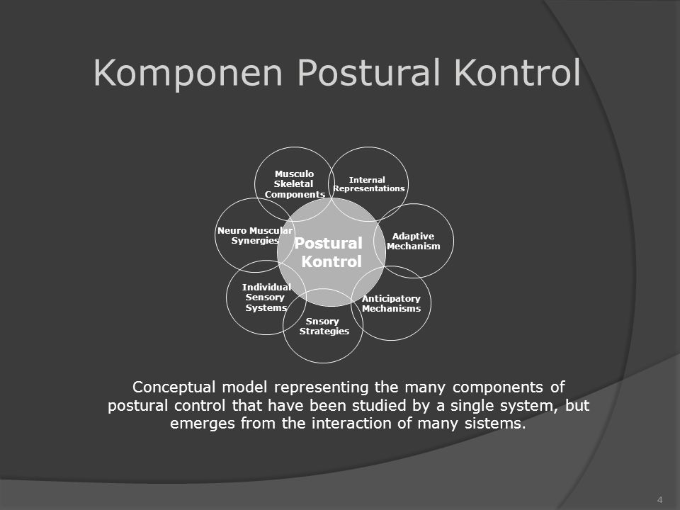 Postural Kontrol Musculo Skeletal Components Internal Representations Snsory Strategies Anticipatory Mechanisms Individual Sensory Systems Neuro Muscular Synergies Adaptive Mechanism 4 Conceptual model representing the many components of postural control that have been studied by a single system, but emerges from the interaction of many sistems.