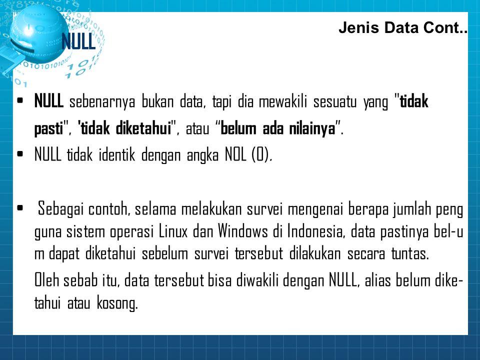 NULL NULL sebenarnya bukan data, tapi dia mewakili sesuatu yang