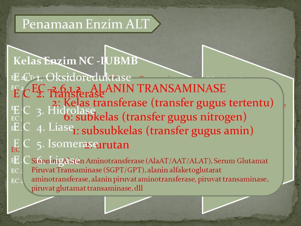 EC 2.1 Transfer 1 karbon EC 2.2 Transfer aldehid/keton EC 2.3 Transfer acyl EC 2.4 Transfer glikosil EC 2.5 Transfer alkil/aril/metil EC 2.6 Transfer nitrogen EC 2.7 Transfer fosfor EC 2.8 Transfer sulfur EC 2.9 Transfer selenium EC 2.6.