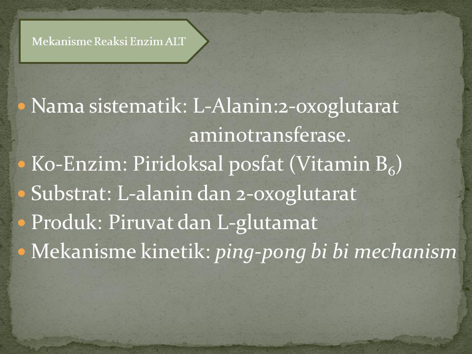 Nama sistematik: L-Alanin:2-oxoglutarat aminotransferase.