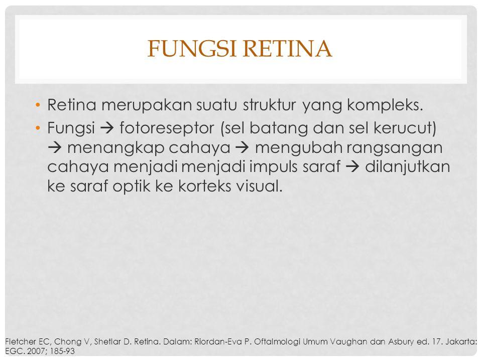 FUNGSI RETINA Retina merupakan suatu struktur yang kompleks. Fungsi  fotoreseptor (sel batang dan sel kerucut)  menangkap cahaya  mengubah rangsang
