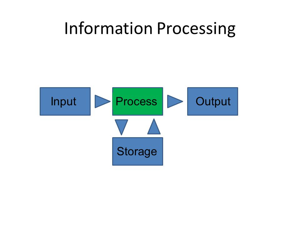 Information Processing InputProcessOutputStorage