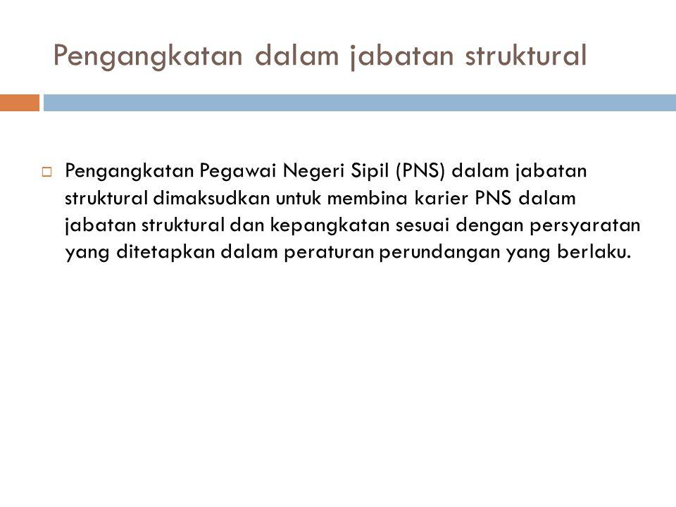 Pengangkatan dalam jabatan struktural  Pengangkatan Pegawai Negeri Sipil (PNS) dalam jabatan struktural dimaksudkan untuk membina karier PNS dalam ja