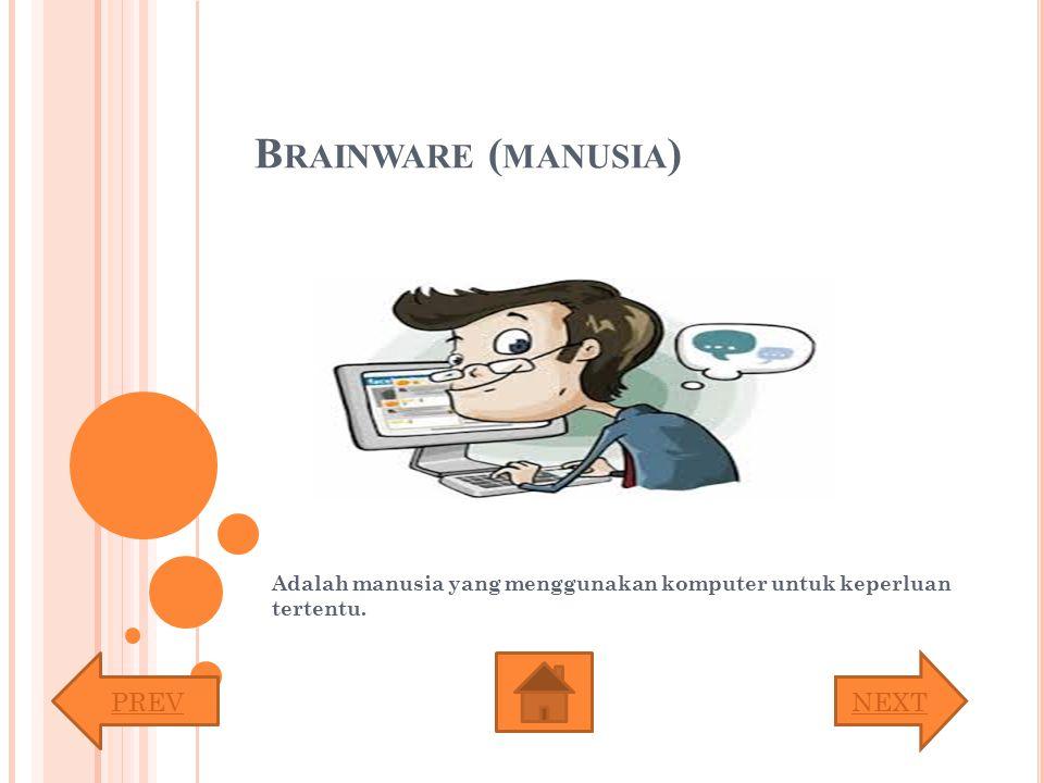 B RAINWARE ( MANUSIA ) Adalah manusia yang menggunakan komputer untuk keperluan tertentu. PREVNEXT