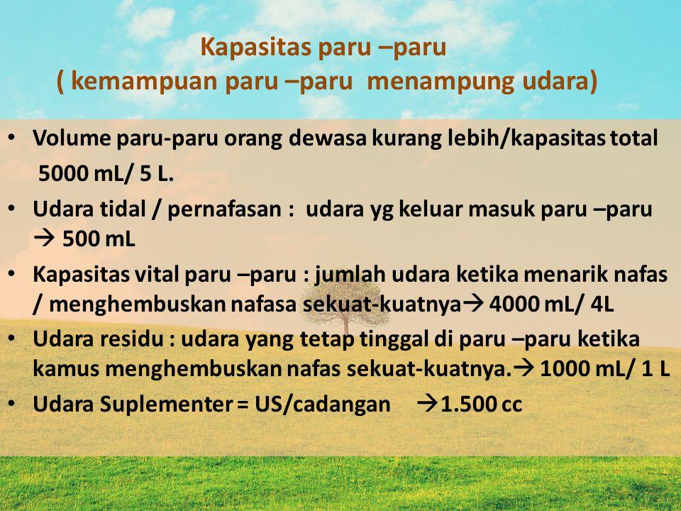 Kapasitas paru –paru ( kemampuan paru –paru menampung udara) Volume paru-paru orang dewasa kurang lebih/kapasitas total 5000 mL/ 5 L. Udara tidal / pe
