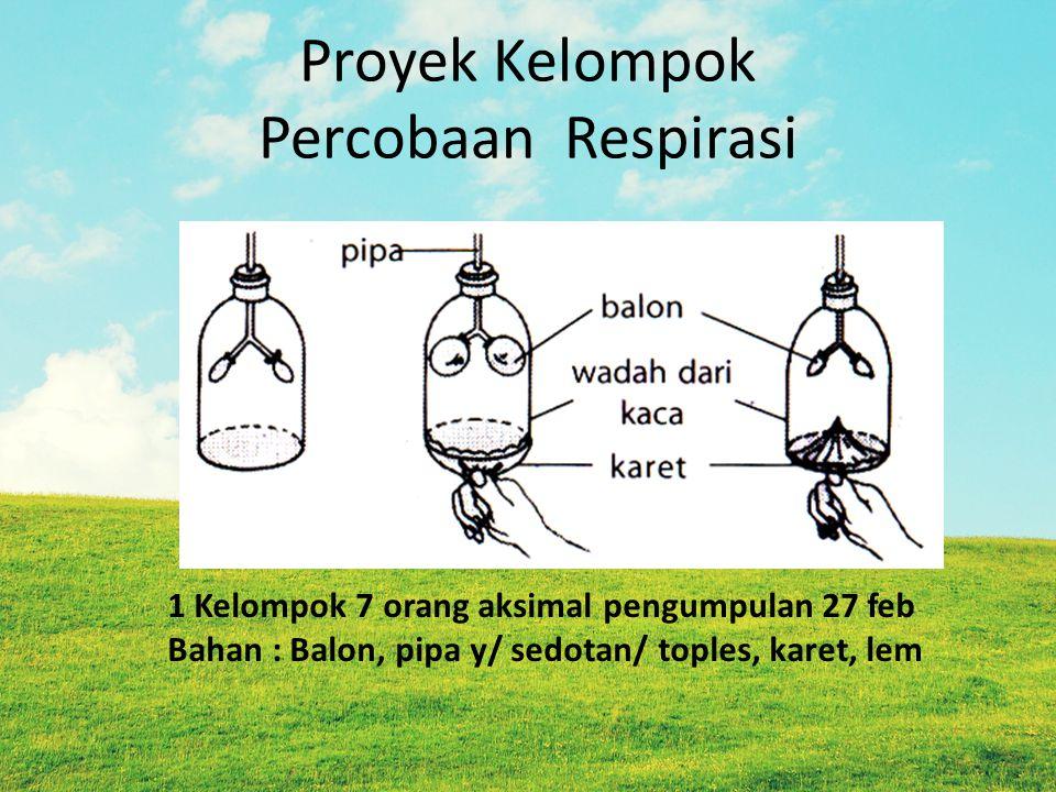 Proyek Kelompok Percobaan Respirasi 1 Kelompok 7 orang aksimal pengumpulan 27 feb Bahan : Balon, pipa y/ sedotan/ toples, karet, lem