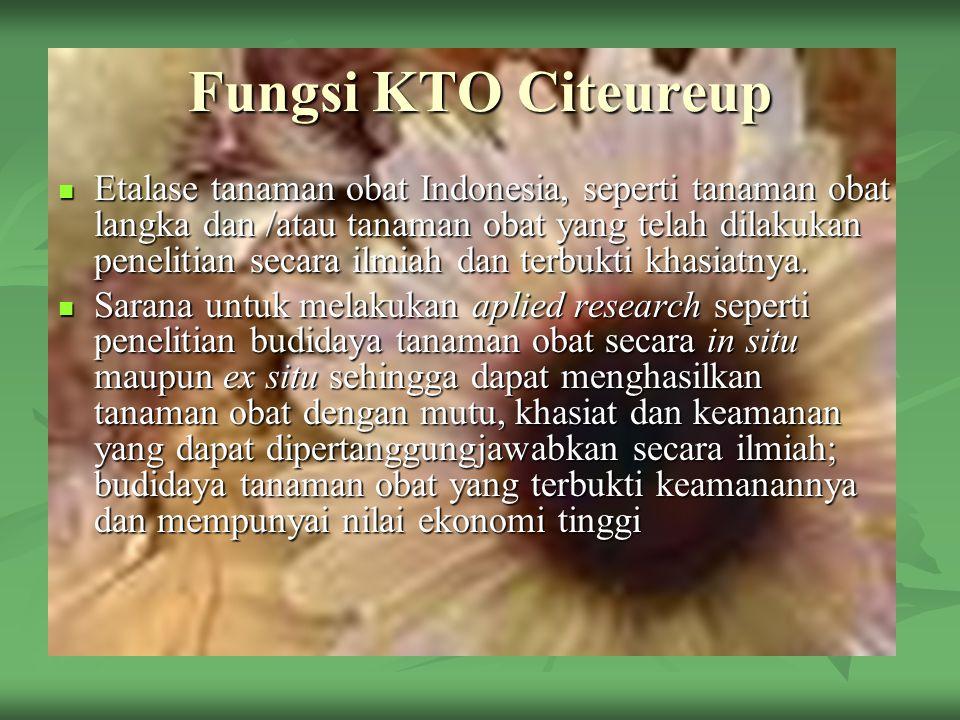 Fungsi KTO Citeureup Penyediaan informasi mengenai tanaman obat.