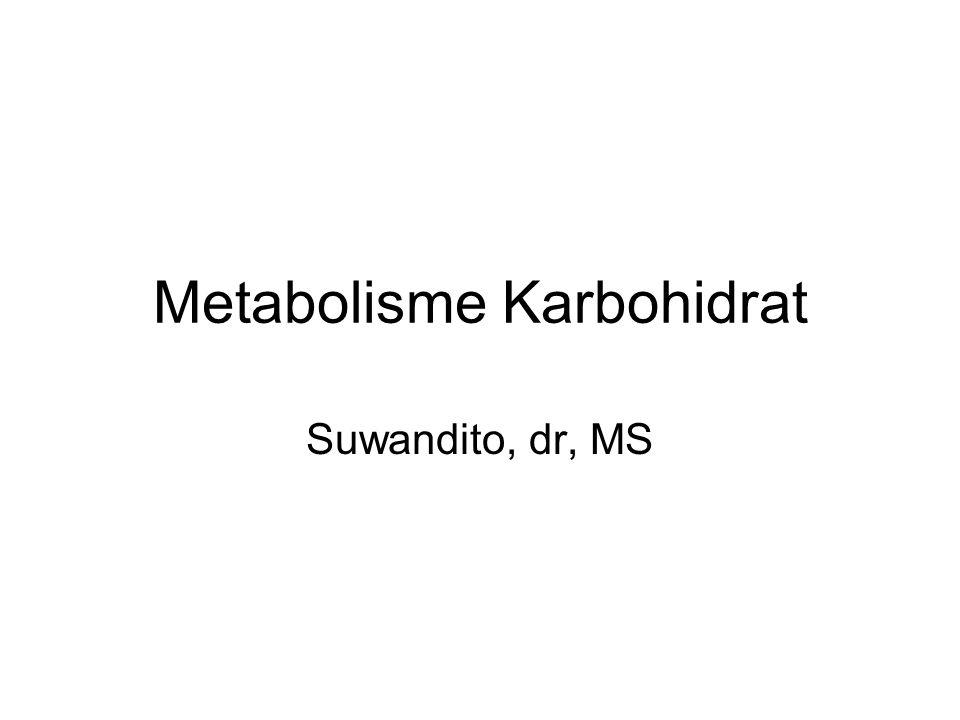 Metabolisme : Perubahan kimia dalam tubuh khususnya dalam sel Anabolisme : Bahan yang lebih sederhana -> lebih kompleks (sintesis) Contoh : Glukosa -> Glikogen Katabolisme : Bahan yg lebih kompleks -> lebih sederhana Contoh : Glikogen -> glukosa Glukosa -> CO2 + H2O + E