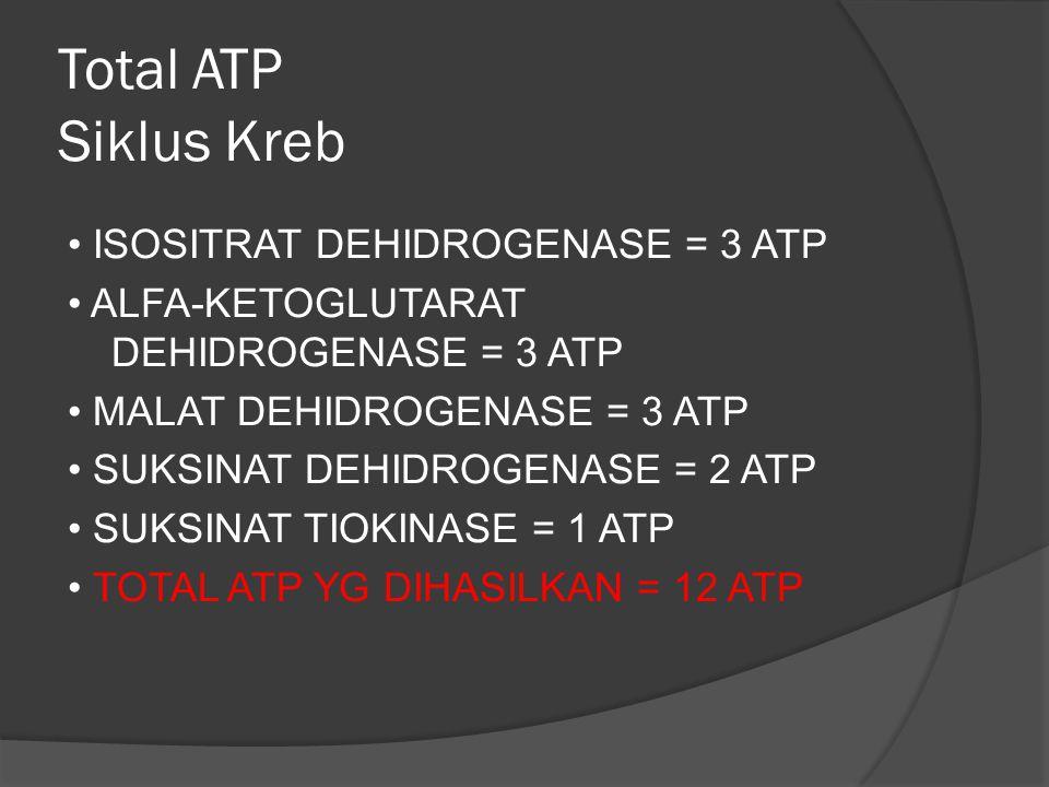 Total ATP Siklus Kreb ISOSITRAT DEHIDROGENASE = 3 ATP ALFA-KETOGLUTARAT DEHIDROGENASE = 3 ATP MALAT DEHIDROGENASE = 3 ATP SUKSINAT DEHIDROGENASE = 2 A