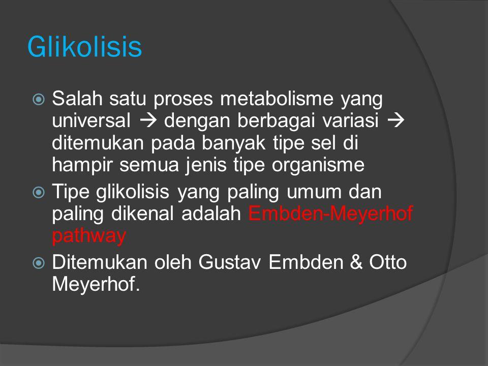  Glikolisis adlah Suatu srangkaian reaksi biokimia dimana satu molekul glukosa dioksidasi menjadi 2 molekul piruvat.