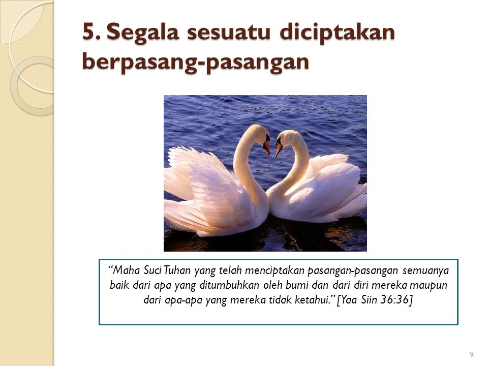 "5. Segala sesuatu diciptakan berpasang-pasangan 9 ""Maha Suci Tuhan yang telah menciptakan pasangan-pasangan semuanya baik dari apa yang ditumbuhkan ol"