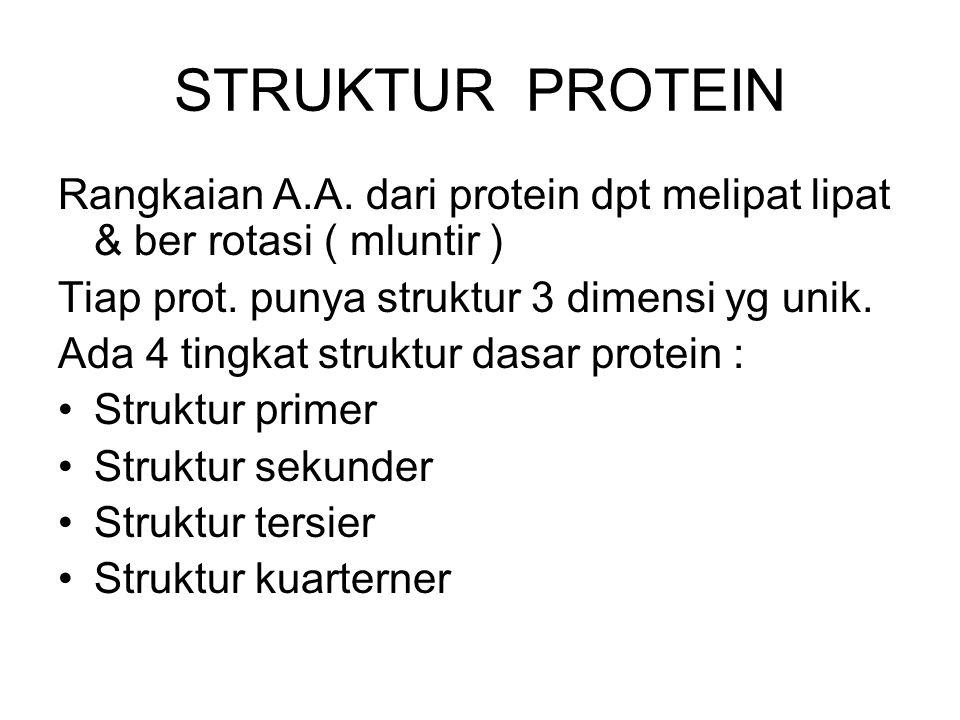 STRUKTUR PROTEIN Rangkaian A.A. dari protein dpt melipat lipat & ber rotasi ( mluntir ) Tiap prot. punya struktur 3 dimensi yg unik. Ada 4 tingkat str