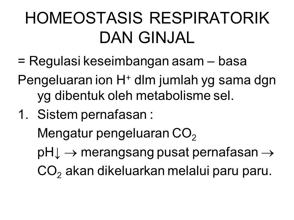 HOMEOSTASIS RESPIRATORIK DAN GINJAL = Regulasi keseimbangan asam – basa Pengeluaran ion H + dlm jumlah yg sama dgn yg dibentuk oleh metabolisme sel. 1