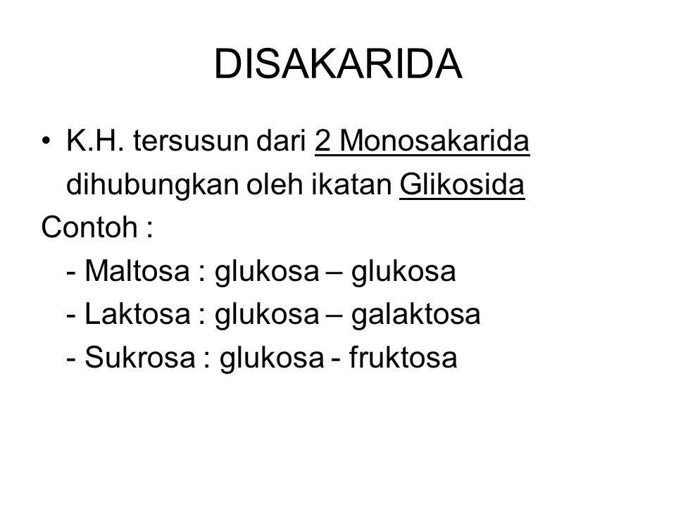 DISAKARIDA K.H. tersusun dari 2 Monosakarida dihubungkan oleh ikatan Glikosida Contoh : - Maltosa : glukosa – glukosa - Laktosa : glukosa – galaktosa