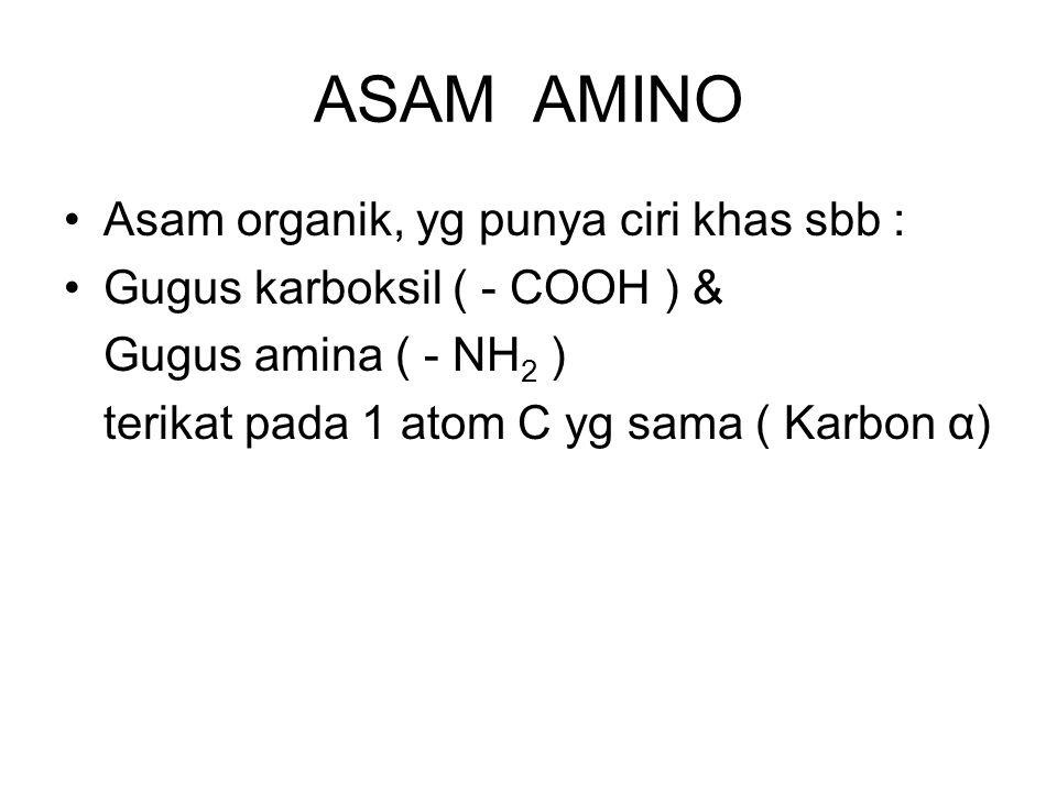 ASAM AMINO Asam organik, yg punya ciri khas sbb : Gugus karboksil ( - COOH ) & Gugus amina ( - NH 2 ) terikat pada 1 atom C yg sama ( Karbon α)
