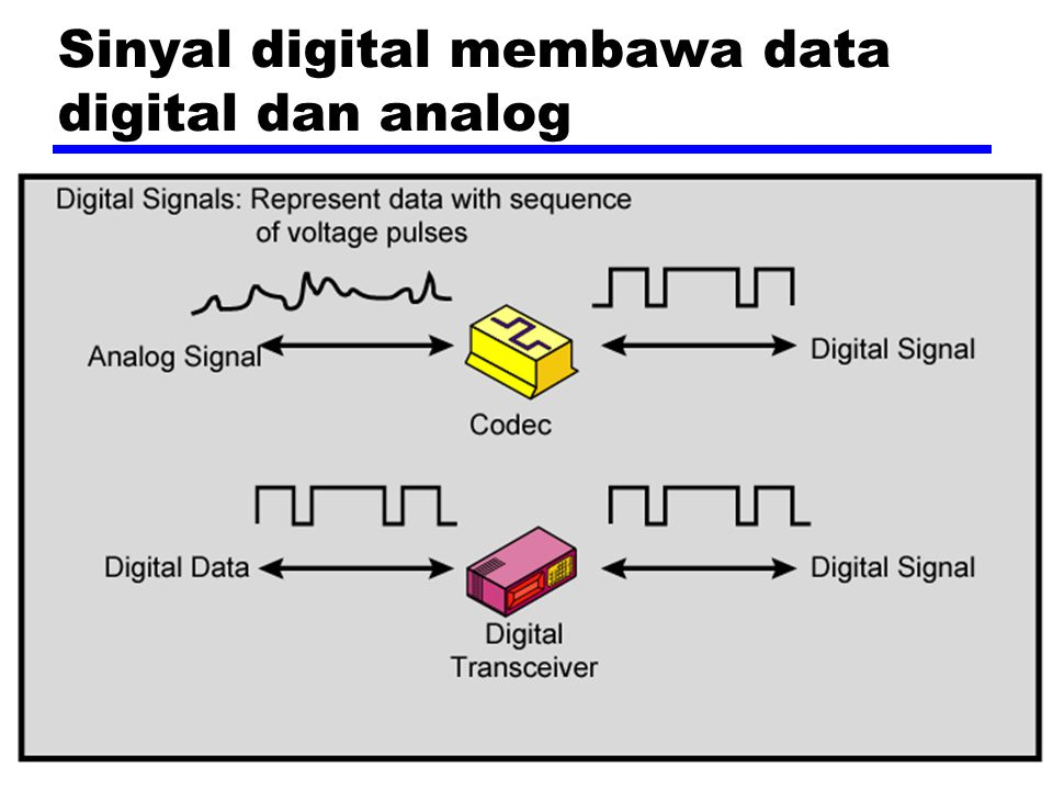 Sinyal digital membawa data digital dan analog