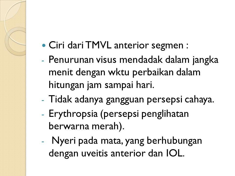 Ciri dari TMVL anterior segmen : - Penurunan visus mendadak dalam jangka menit dengan wktu perbaikan dalam hitungan jam sampai hari. - Tidak adanya ga
