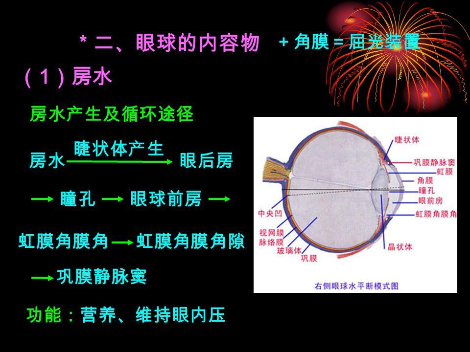 * 二、眼球的内容物 ( 1 )房水 虹膜角膜角隙 +角膜=屈光装置 房水产生及循环途径 睫状体产生 眼后房 瞳孔眼球前房 巩膜静脉窦 房水 虹膜角膜角 功能:营养、维持眼内压
