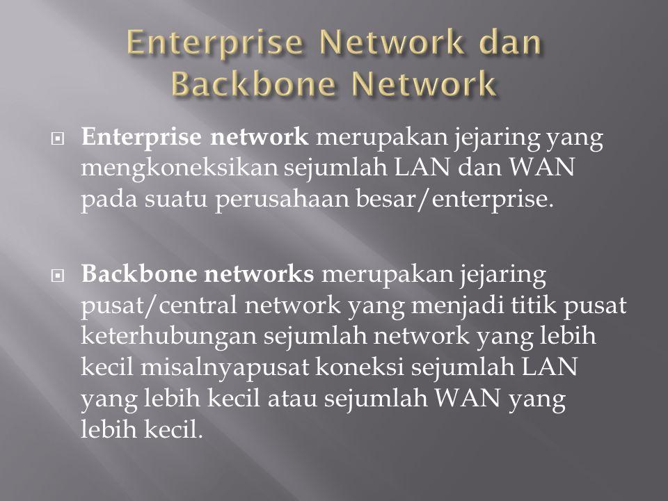  Enterprise network merupakan jejaring yang mengkoneksikan sejumlah LAN dan WAN pada suatu perusahaan besar/enterprise.  Backbone networks merupakan