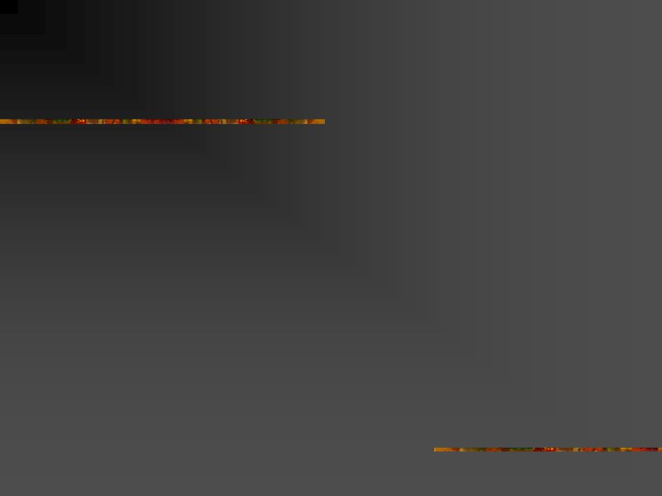 Perjalanan Revisi Kurikulum Brain Storming : Sep 2008 – Feb 2009 Lokakarya I : 17- 19 November  Rincian kemampuan tiap cluster Loakakarya II : 18-22 Desember 2009  Daftar mata kuliah Lokakarya III : 16-18 April 2008  Silabi Pemantapan: 7 Juli 2009  struktur mata kuliah: koding, network, kesetaraan