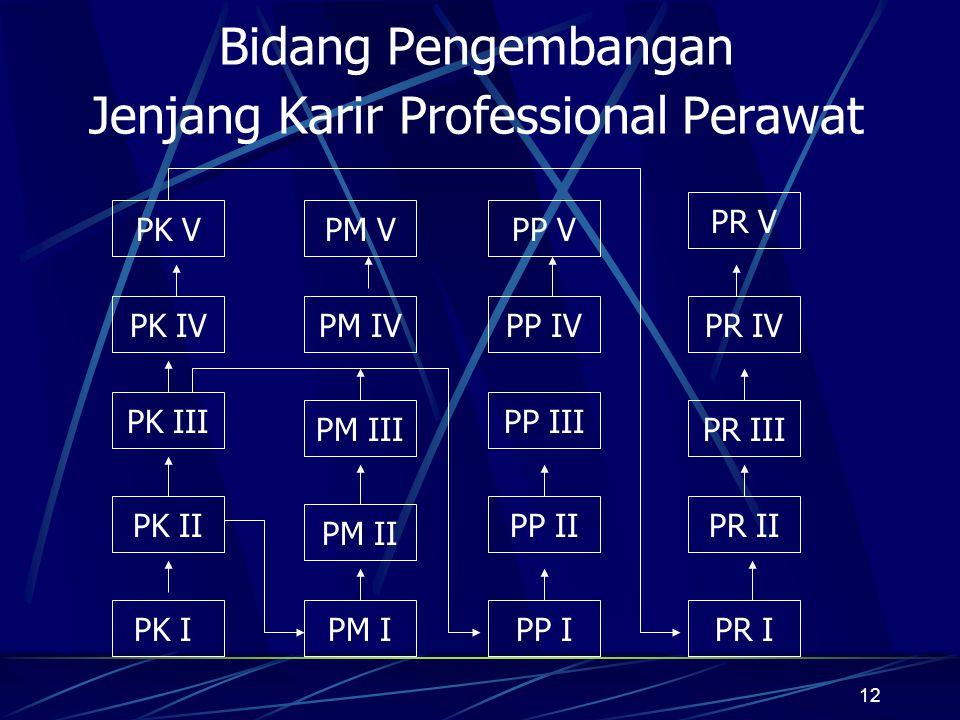 12 Bidang Pengembangan Jenjang Karir Professional Perawat PK IVPM IVPP IVPR IV PK V PM III PP III PR III PM II PK I PK II PM I PP II PP I PR II PR I P