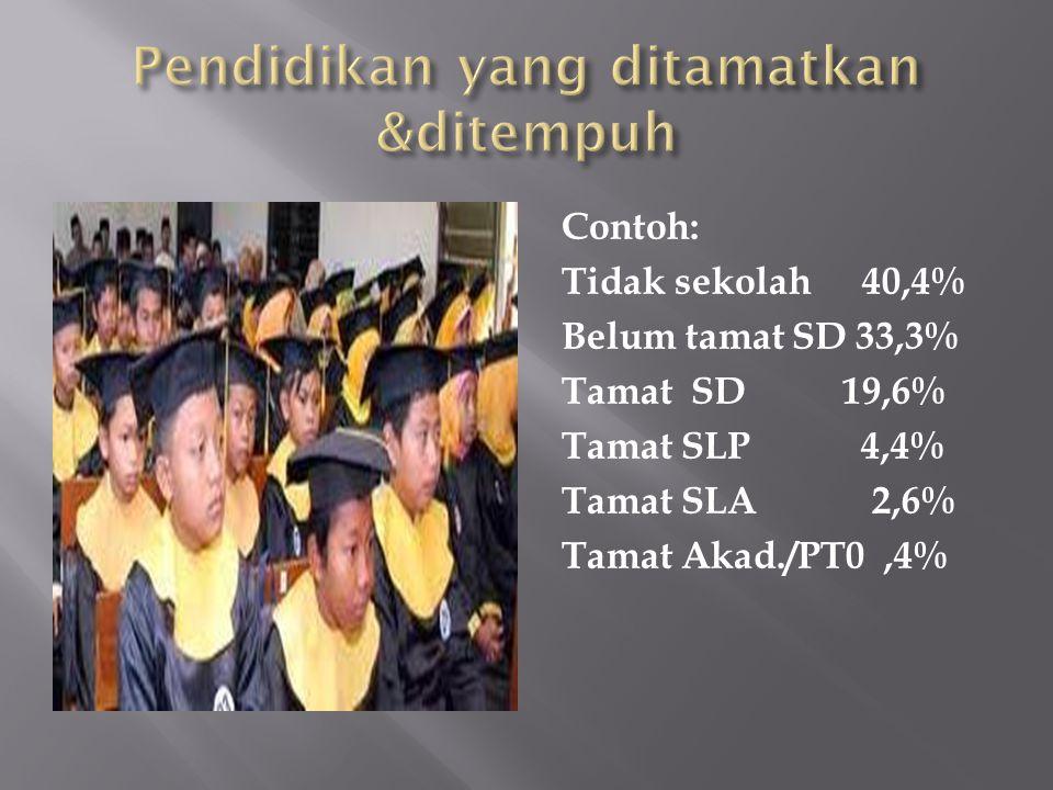 Contoh: Tidak sekolah40,4% Belum tamat SD 33,3% Tamat SD 19,6% Tamat SLP 4,4% Tamat SLA 2,6% Tamat Akad./PT0,4%