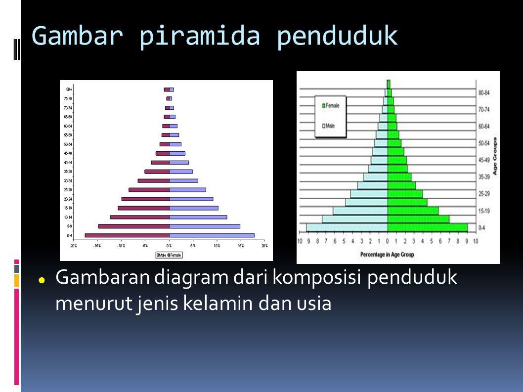 Gambar piramida penduduk Gambaran diagram dari komposisi penduduk menurut jenis kelamin dan usia