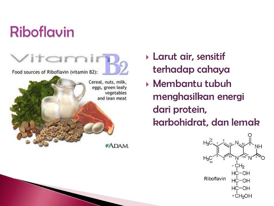  Vitamin ◦ Riboflavin (a B vitamin) ◦ Vitamin A ◦ Vitamin D  Susu juga mengandung thiamine & niacin dalam jumlah kecil
