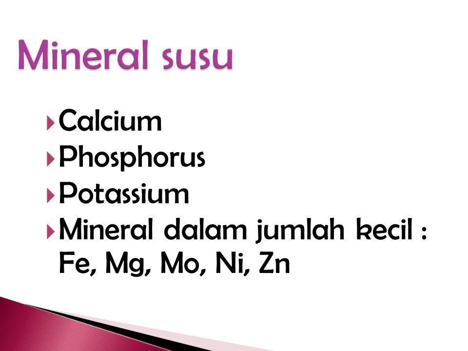  Membantu tubuh dalam penggunaan kalsium dan fosfor  Membantu tubuh membangun tulang dan gigi yang kuat dan sehat