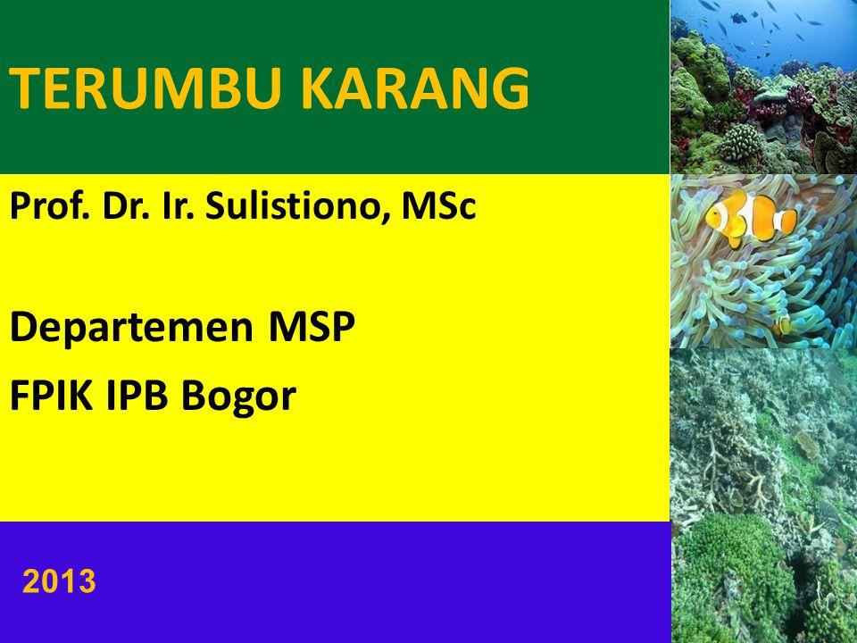 TERUMBU KARANG Prof. Dr. Ir. Sulistiono, MSc Departemen MSP FPIK IPB Bogor 2013
