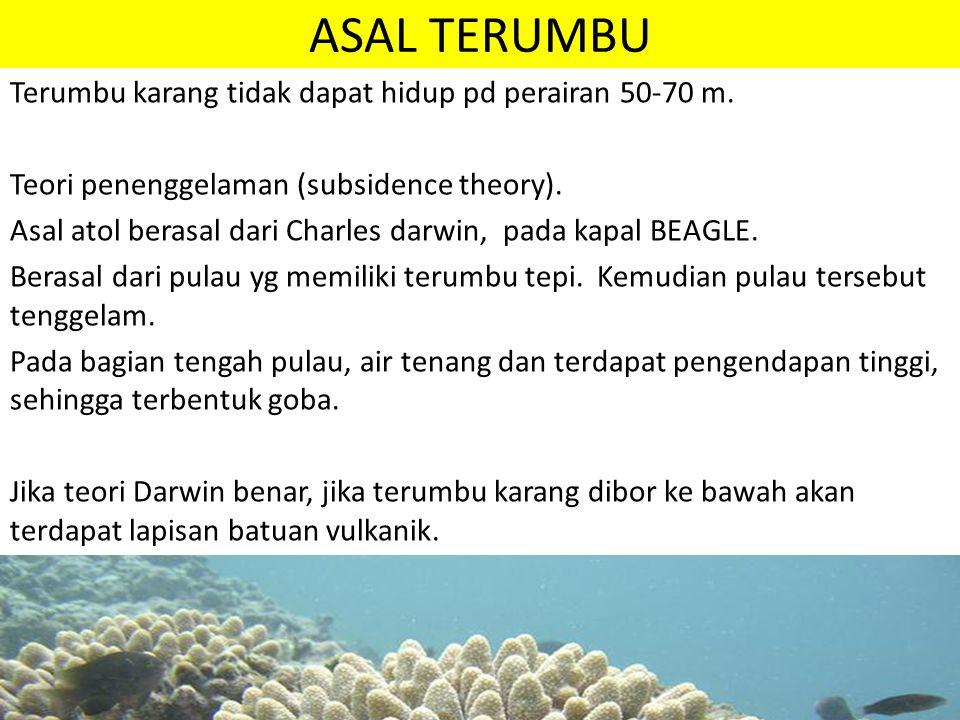 ASAL TERUMBU Terumbu karang tidak dapat hidup pd perairan 50-70 m. Teori penenggelaman (subsidence theory). Asal atol berasal dari Charles darwin, pad