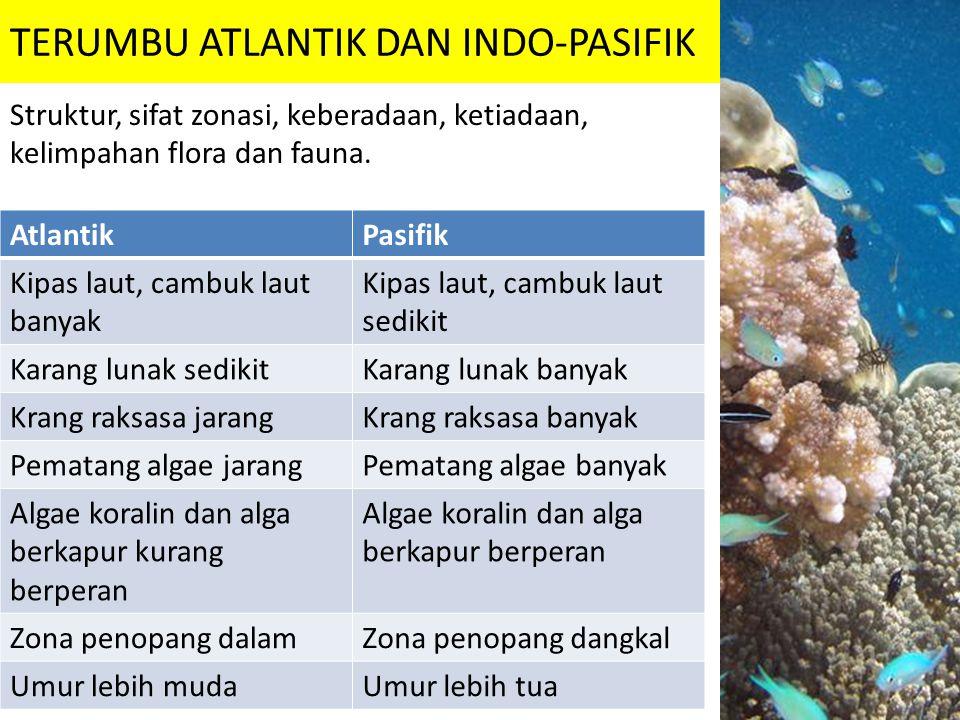 TERUMBU ATLANTIK DAN INDO-PASIFIK Struktur, sifat zonasi, keberadaan, ketiadaan, kelimpahan flora dan fauna. AtlantikPasifik Kipas laut, cambuk laut b