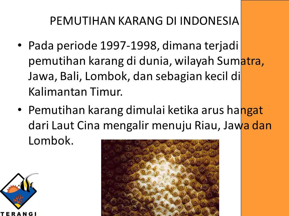 PEMUTIHAN KARANG DI INDONESIA Pada periode 1997-1998, dimana terjadi pemutihan karang di dunia, wilayah Sumatra, Jawa, Bali, Lombok, dan sebagian keci