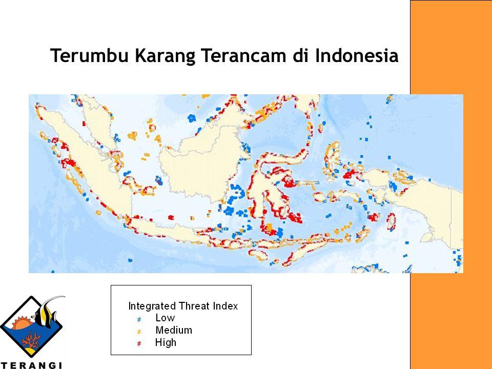 INDONESIA Terumbu Karang Terancam di Indonesia