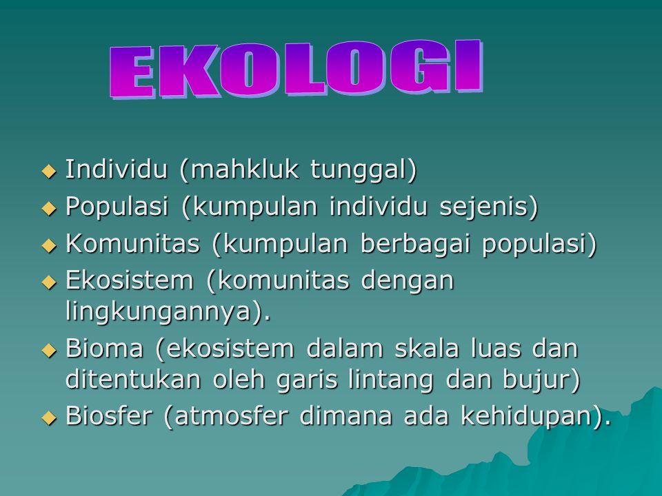  Individu (mahkluk tunggal)  Populasi (kumpulan individu sejenis)  Komunitas (kumpulan berbagai populasi)  Ekosistem (komunitas dengan lingkungann