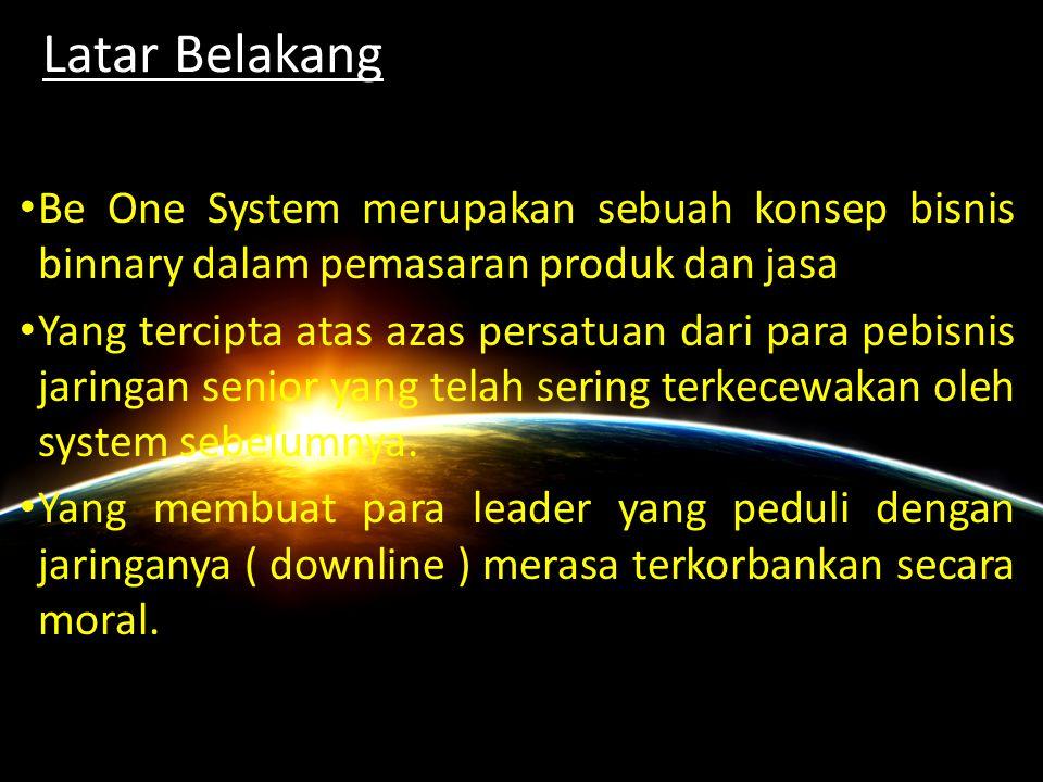 www.beonesystem.com