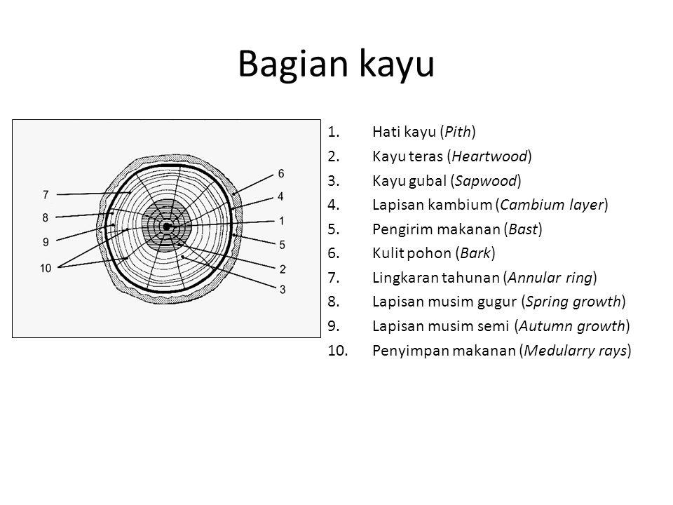 Bagian kayu 1.Hati kayu (Pith) 2.Kayu teras (Heartwood) 3.Kayu gubal (Sapwood) 4.Lapisan kambium (Cambium layer) 5.Pengirim makanan (Bast) 6.Kulit pohon (Bark) 7.Lingkaran tahunan (Annular ring) 8.Lapisan musim gugur (Spring growth) 9.Lapisan musim semi (Autumn growth) 10.Penyimpan makanan (Medularry rays)