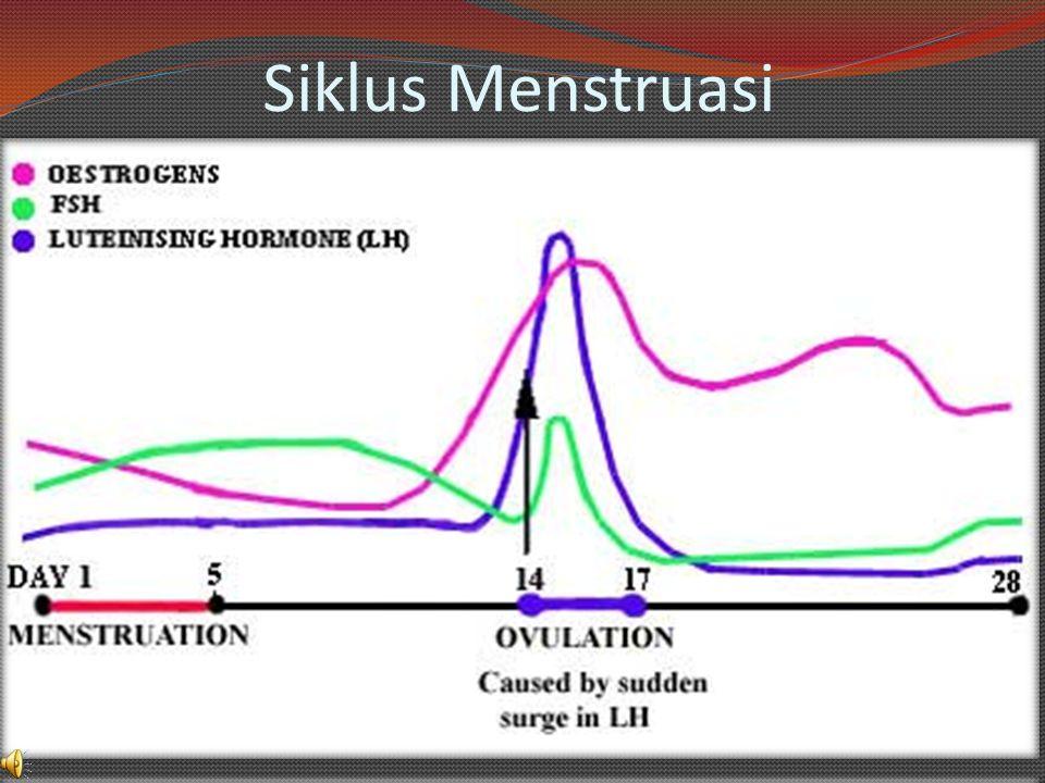 Fase Pasca Ovulasi Fase ini berlangsung selama 14 hari sebelum menstruasi berikutnya.