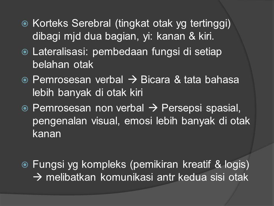  Korteks Serebral (tingkat otak yg tertinggi) dibagi mjd dua bagian, yi: kanan & kiri.  Lateralisasi: pembedaan fungsi di setiap belahan otak  Pemr