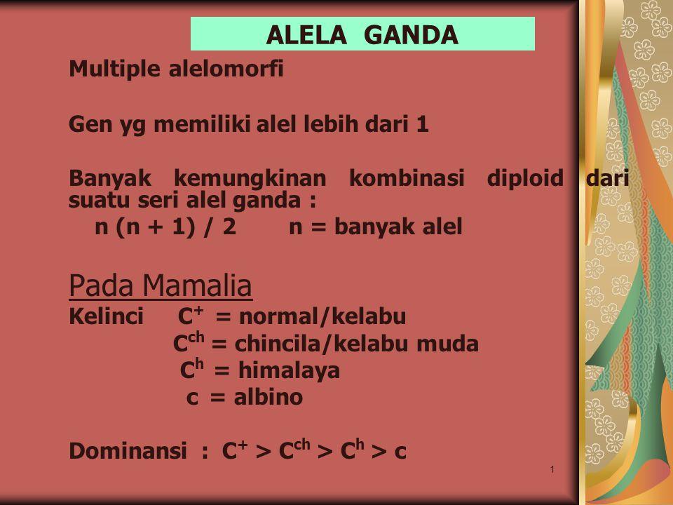 1 ALELA GANDA Multiple alelomorfi Gen yg memiliki alel lebih dari 1 Banyak kemungkinan kombinasi diploid dari suatu seri alel ganda : n (n + 1) / 2 n