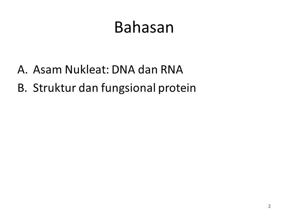 Pita ganda DNA Dikemukakan oleh Watson & Crick (1953) Pita ganda (double stranded) Berpilin spiral (helical structure) Bersifat anti-paralel Gula-fospat menjadi backbone di bagian luar Pasangan basa di bagian dalam Pasangan basa komplementer: – A berpasangan dengan T - 2 ikatan Hidrogen – G berpasangan dengan C - 3 ikatan Hidrogen 13