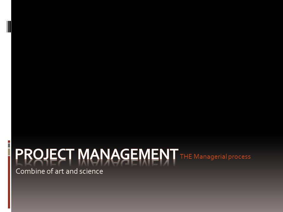 OVERVIEW STRATEGY ESTIMATE PROJECT ORGANIZATION LEADERSHIP PROJECT NETWORKING RISK TEAM REDUCE PROJECT DURATION PROGRESS AUDIT INTERNATIONAL PROJECT TEAM WORK RESOURCES SCHEDULE FUTURE