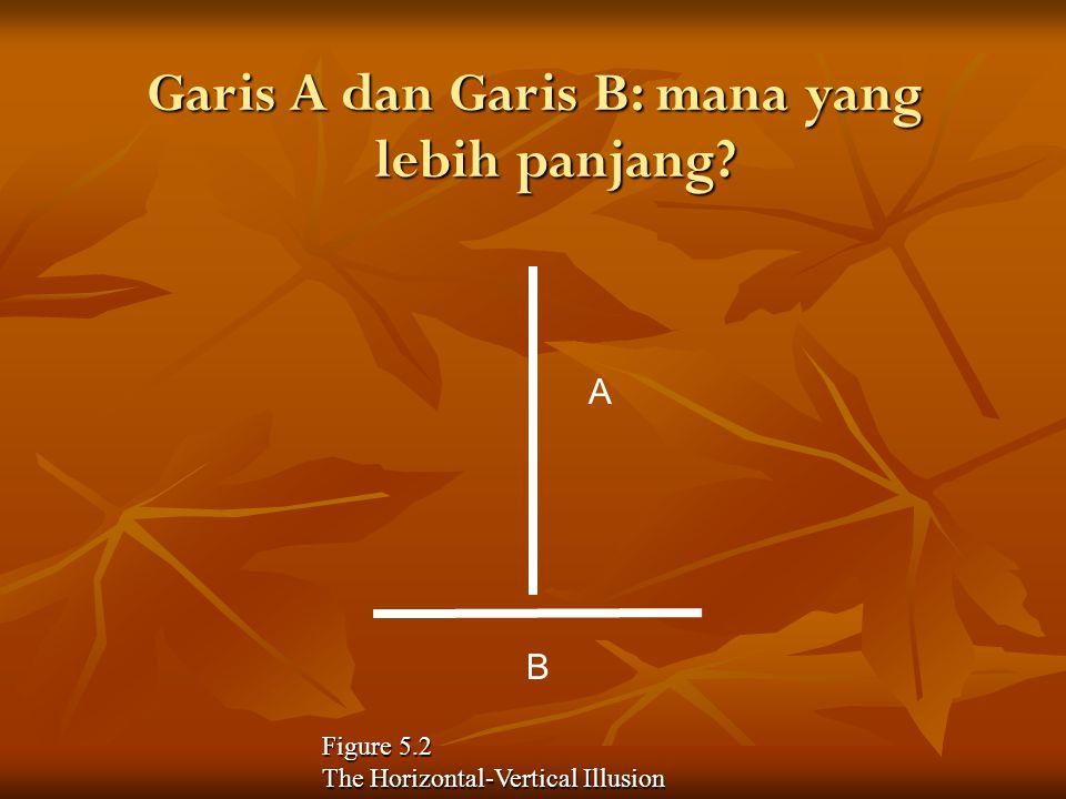 Garis A dan Garis B: mana yang lebih panjang? A B Figure 5.2 The Horizontal-Vertical Illusion