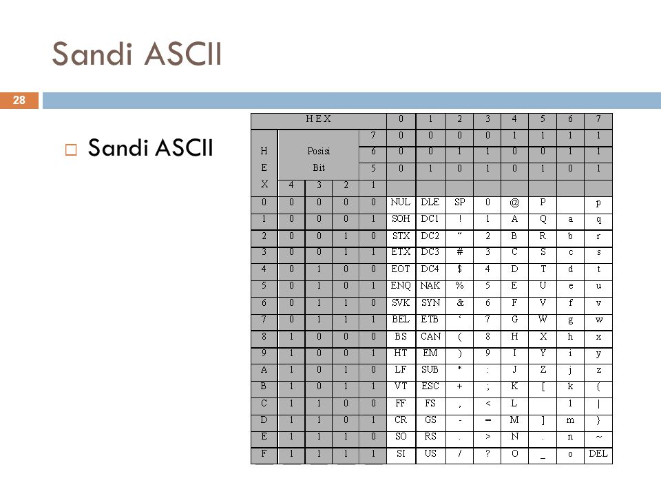 Sandi ASCII  Sandi ASCII 28